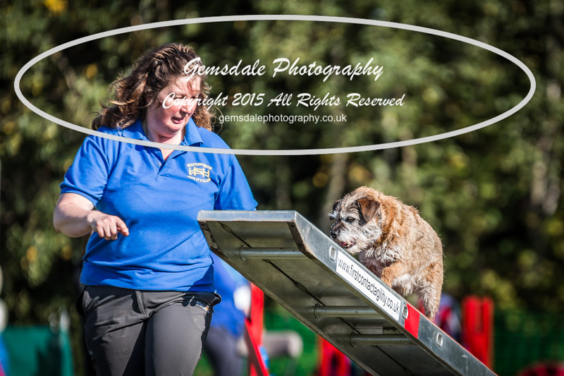 KC Southdowns Agility September 2015 -4033