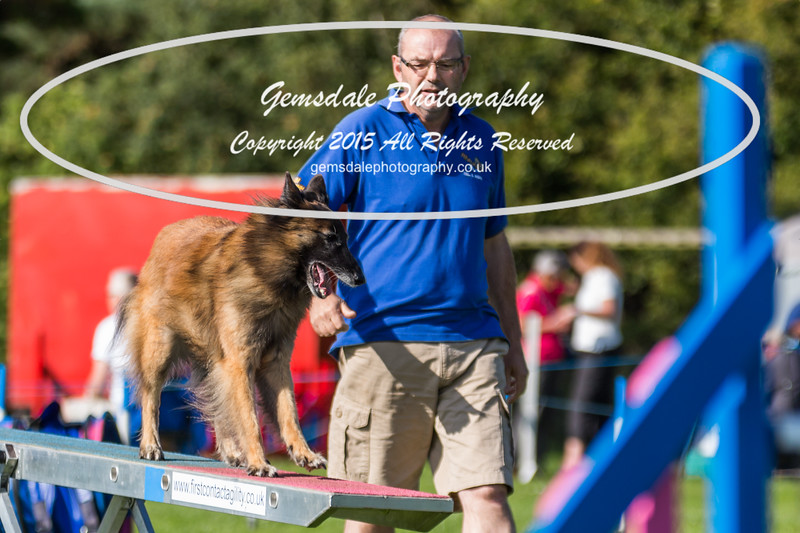 KC Southdowns Agility September 2015 -9040