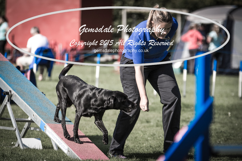 KC Southdowns Agility September 2015 -9045