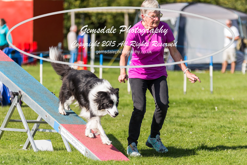 KC Southdowns Agility September 2015 -9031