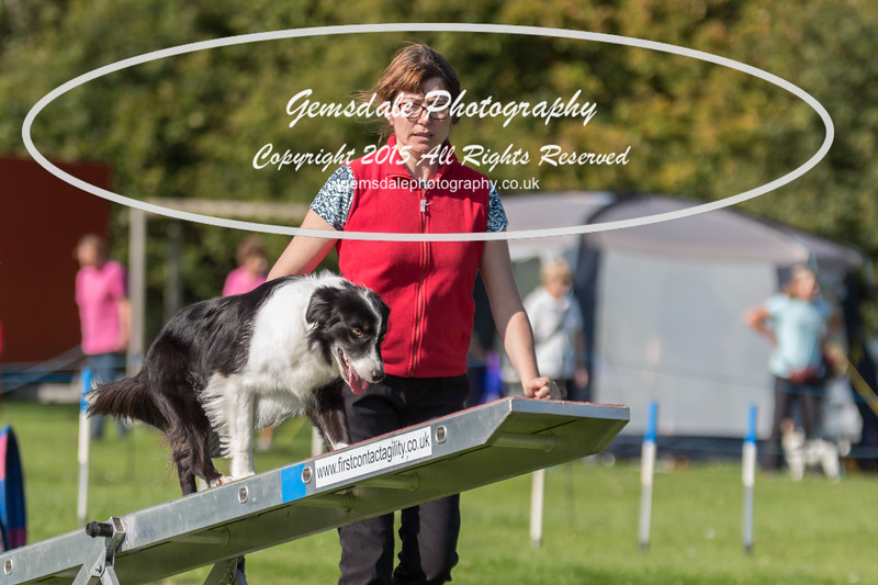 KC Southdowns Agility September 2015 -9037