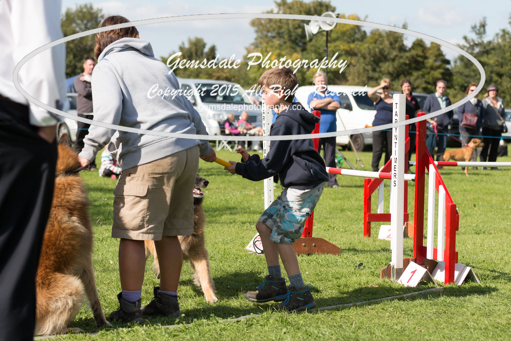 KC Southdowns Agility September 2015 -6021