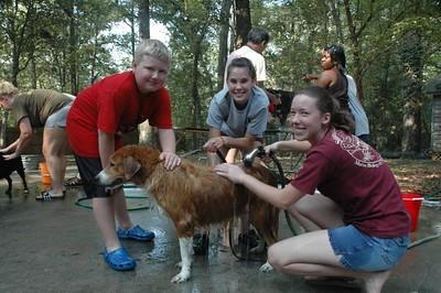 August 11, 2007 Dog Wash
