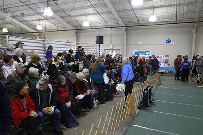 Hundreds of people showed up at the 30th annual Dog Expo at Redwood Acres in Eureka on Sunday afternoon. (Hunter Cresswell - The Times-Standard)