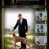 Canine Chronicle - JD
