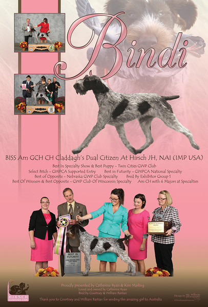 Bindi DNAu Ad 11-2013