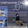 JD AKC Weekly Winners Ad 4-2013