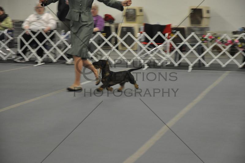 DCGS2011_9942