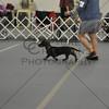 DCGS2011_0014