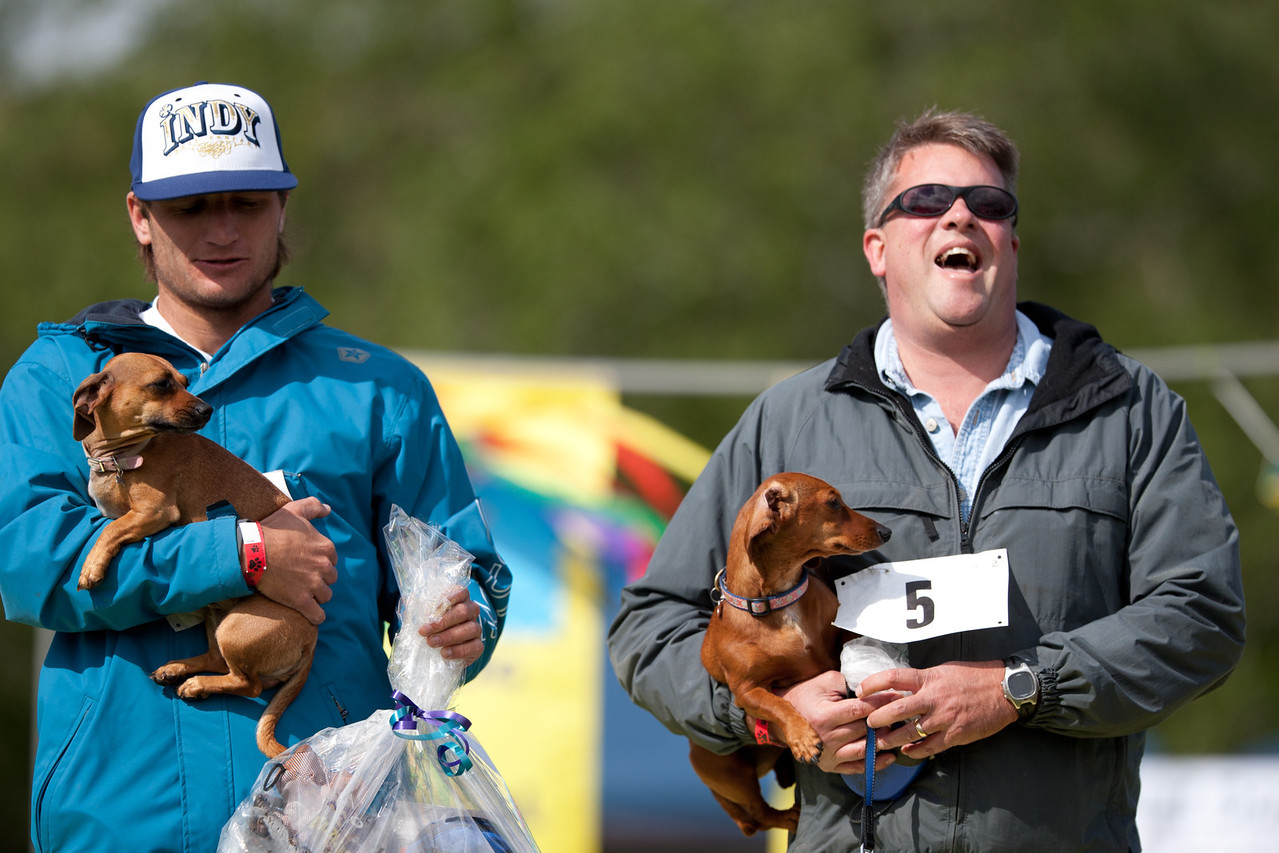 Doxie Dash winners