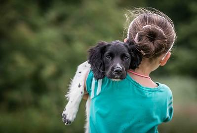 Dog Photographer Andy Biggar Photographer