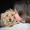Dog Photographer Andy Biggar Photography