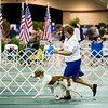 1/W/BW      15	 HOPE'S EXCEEDING THE SPEED LIMIT , SR74550402 8/24/2012. Breeder: Douglas and Kim Tighe. By GCH Tonan-Hope's R U Kiddin' Me -- CH Triumphant's More Than A Memory. Nancy Hewitt and Douglas Tighe . Dog