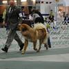 2012-04-29AKC Burch Run27
