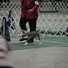 2012-04-28AKC Burch Run19