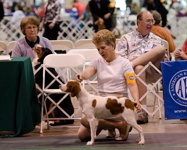 TRU'S LUCKY CHARM , SR63947703 7/21/2010. Breeder: Marc and Vicki Rittner. By DCH Rusty Ridge Lucky Strike -- CH Tru's Jump N Jada. Marc & Vicki Rittner