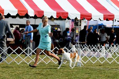 Winner's Dog Whisper Ridge Galileo