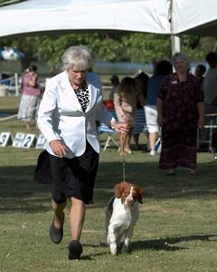 Select Dog  CH Brigade's Hi Hopes Rocket JH  Handler: Kathy Grayson