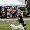WHITE SPIRIT'S NEW SILVERMOON , WS27366801 8/4/2008. Breeder: June M. Scott. and Gayl Jokiel By CH Wolf River's Shogun -- CH Northface Mikaela White Spirit. June Scott . Bitch