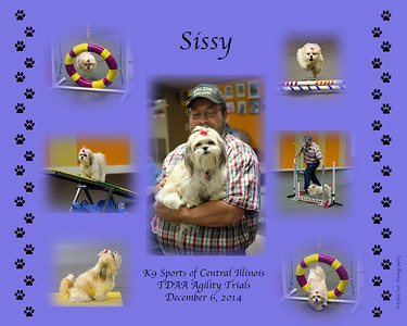 collage-sissy