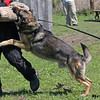 dfwtraining03252012gnash1