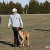 DFW_03-03-2012_Georgia_3