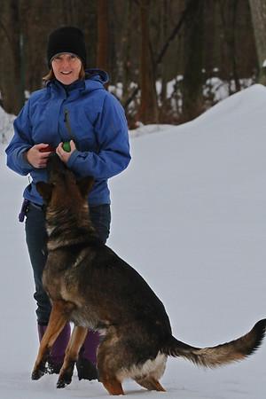 Dogs Snow 2013