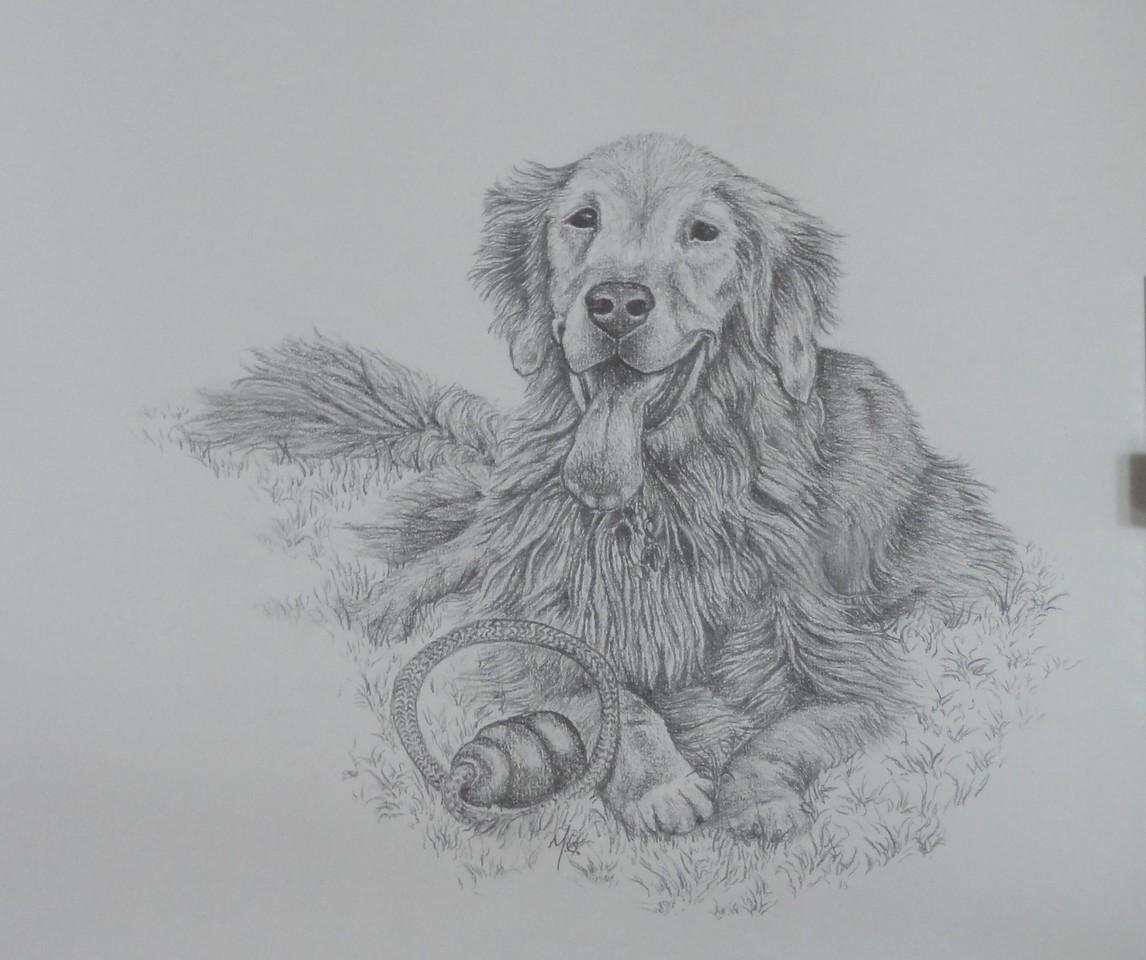 Pinkerton, drawn by MG