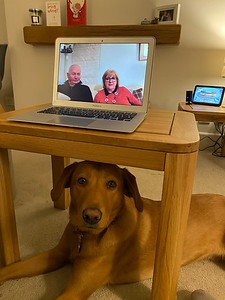 Watching Mum and Dad on a FaceTime with my Ratho chums