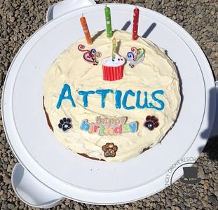 Atticus & Elsie's Double Birthday Party!