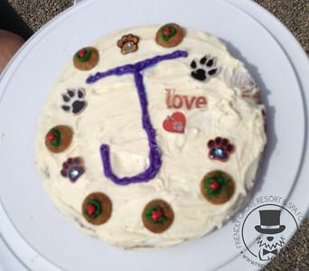 Birthday Party for Jasper!