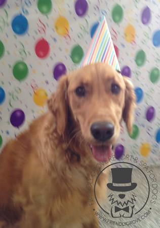 Coopers Birthday