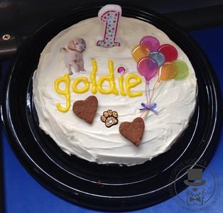 Goldie's First Birthday!