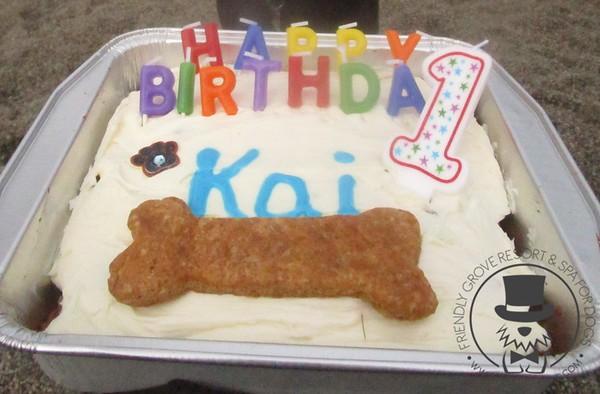 Kai's 1st Birthday!