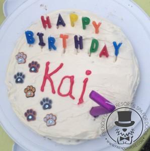 Kai's 7th Birthday!