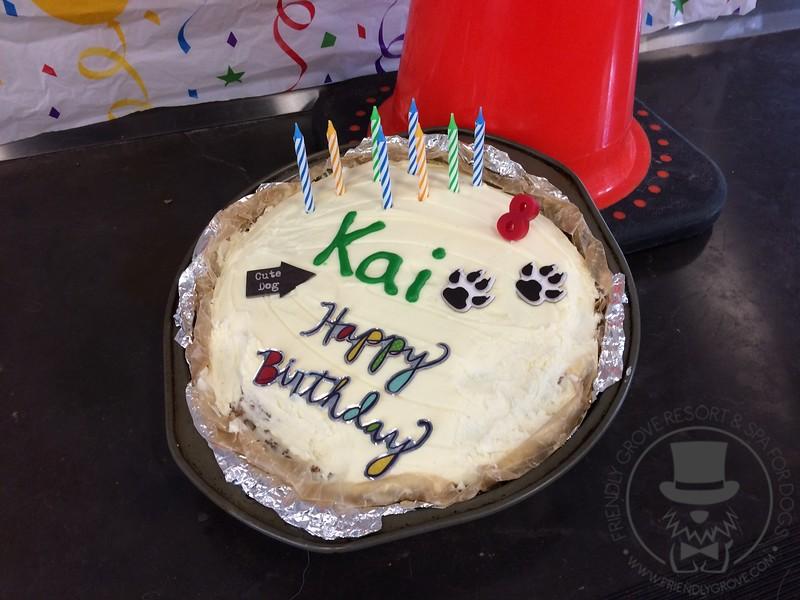 Kais 8th Birthday Friendlygrove