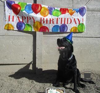 Neptune's 2nd Birthday!