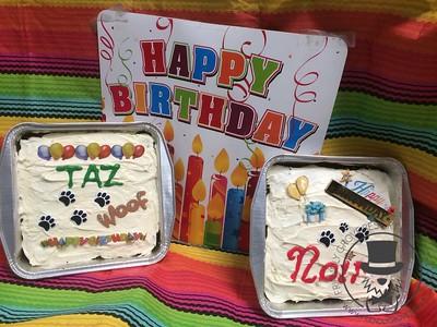Noir & Taz  Birthday
