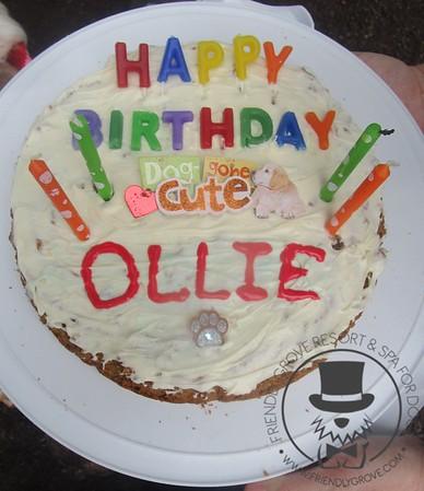 Ollie's Birthday Bash!