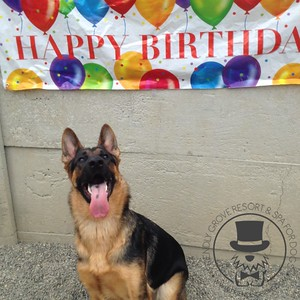Penny Hartman's First Birthday