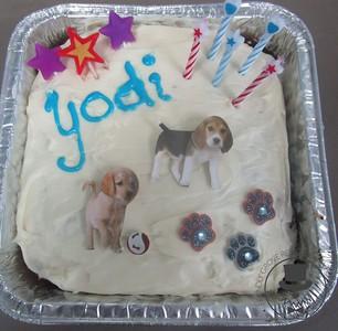 Yodi's Birthday Party!