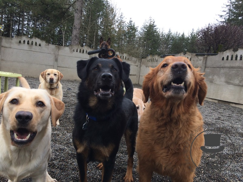 Happy Friday Group !