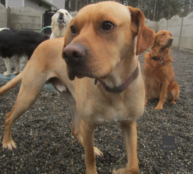 Tatoosh and some silly faces behind him :)