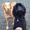 Sadie and Gita