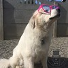 Emma is testing out her new shades in the sun