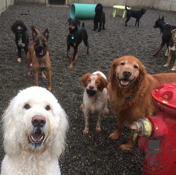 A big happy group!