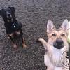 Jupiter and Zeke :)