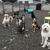 Everyone pose!