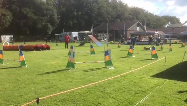 2016-10-09 Ronja agility Jhr  Gockinga Bokaal SP