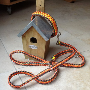 Paracord halsband en riem Kari